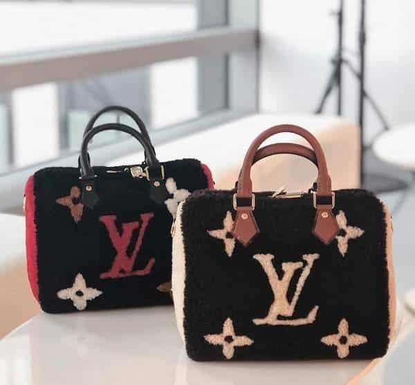 Louis Vuitton Teddy bag